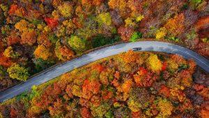 Best Fall Foliage